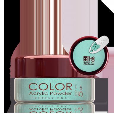Akril prah u boji - Matt 309